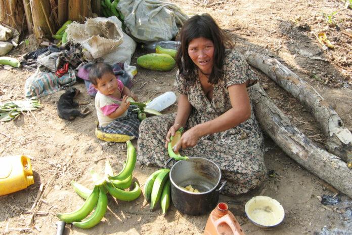Tsimane indigenous amazonians